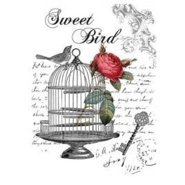 Transfer Home Decor 25x35cm Sweet Bird