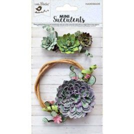 Mini Suculents | Suculenta Ornamental